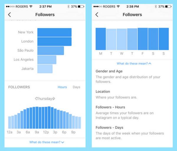 تحلیل داده ها با Instagram Insights