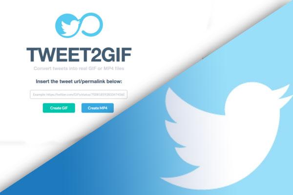 نحوه-ذخیره-گیف-GIF-از-توییتر--در-آیفون،-اندروید-یا-دسک-تاپ