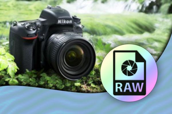 باز-کردن-فایل-های-NEF-RAW-در-ویندوز-۱۰