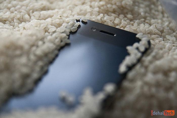 تلفن را در برنج قرار دهید